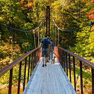 Thoreau suspension bridge