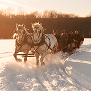 Winter Wonderland - Sleigh Ride